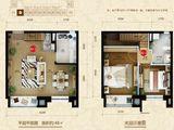星河185_2室2厅2卫 建面48平米